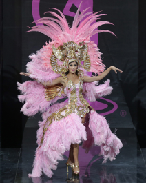 alt text here